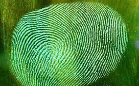 fingerprint-green