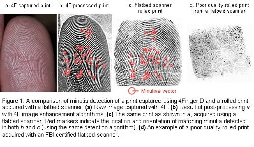 fingerprint-minutia-detection
