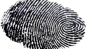 fingerprint-large
