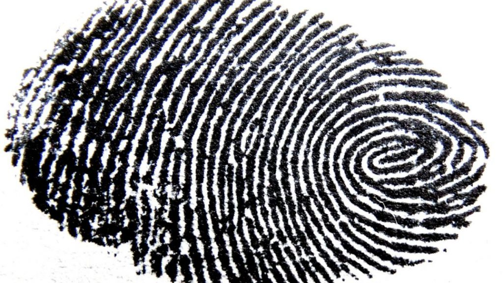 Green Bit brings fingerprint expertise to financial sector