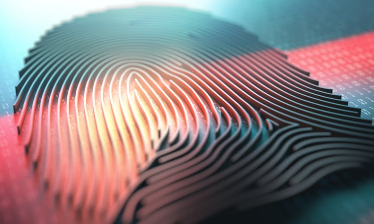 Africa digital ID update: biometrics for voter ID in Niger, SIM registration in Liberia and pot farm security in Lesotho - Biometric Update