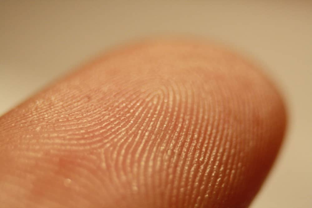 Less than 10 percent of UK police forces accredited for fingerprint processing