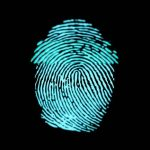 Fingerprint-Identification