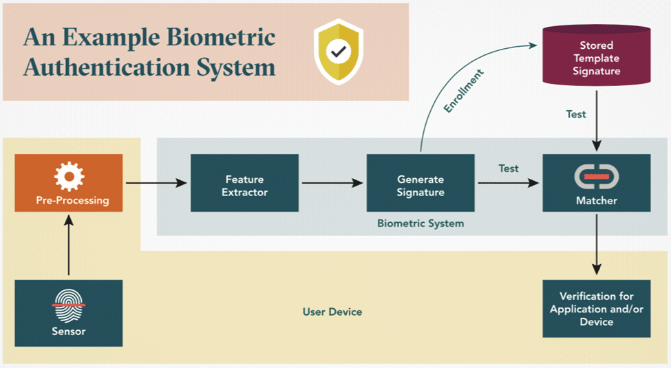 An Example Biometric Authentication System