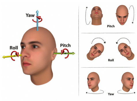 pitch-yaw-and-roll-facial-rec