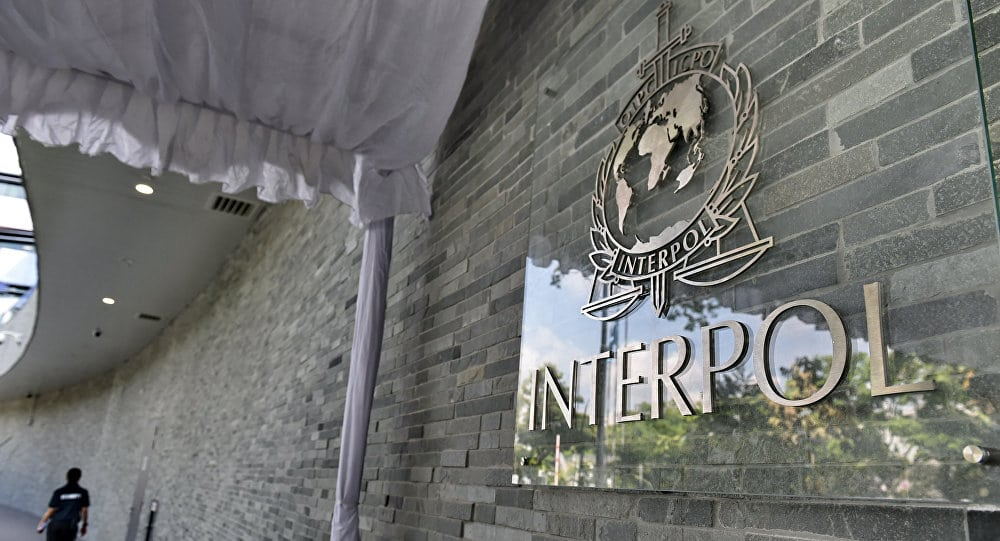 INTERPOL urges systematic biometric data collection and sharing to combat terrorist threats