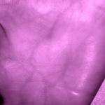 palm vein pattern